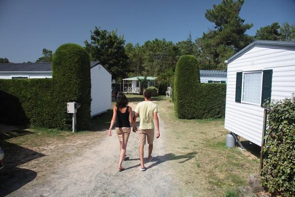Les allées du camping de Saint Jean de Monts le Logis